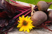 Homegrown beetroots — Stock Photo