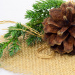 Stock Photo: Pinecone ornament