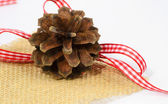 Holiday pinecone — Stock Photo