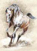 Horse. — Stock Photo