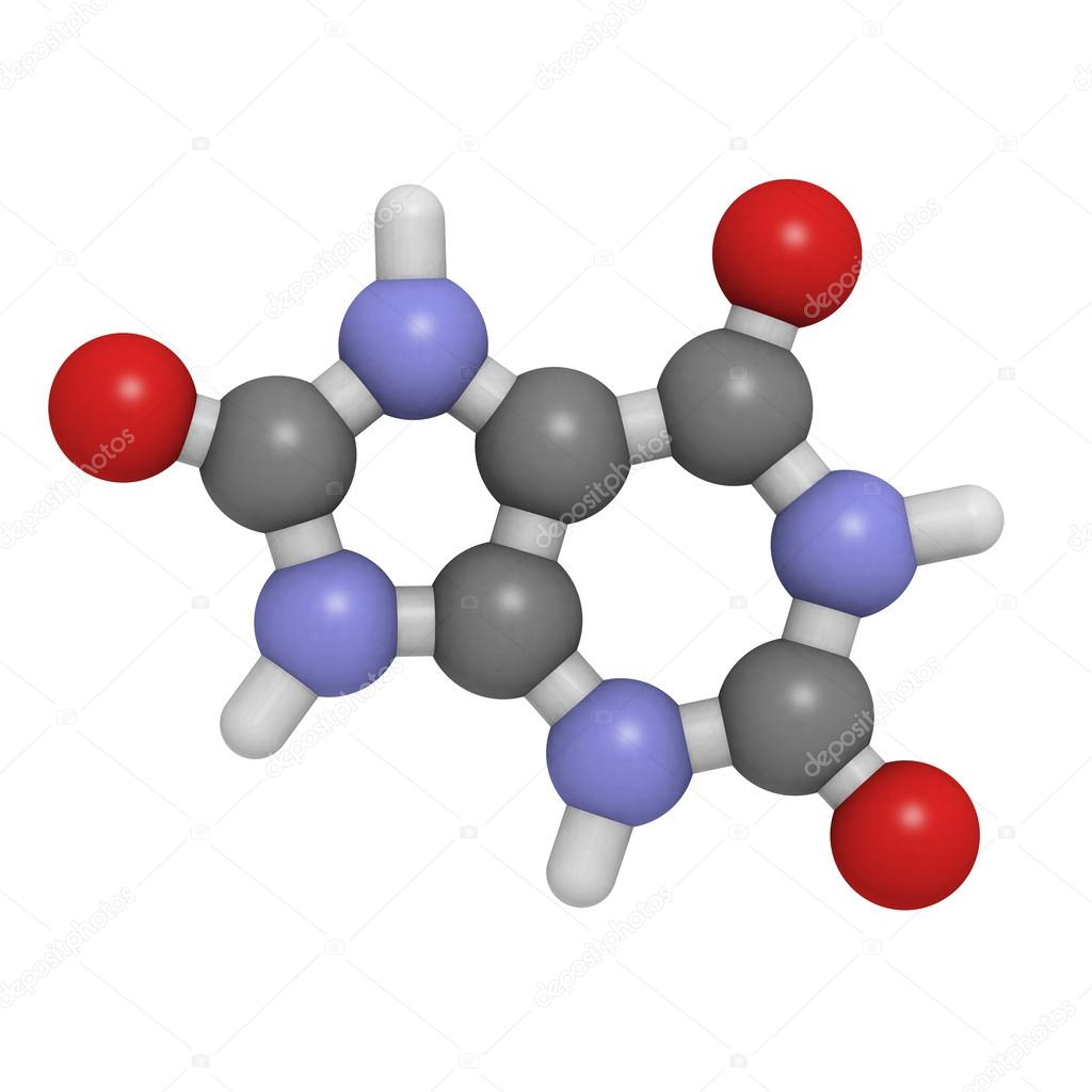 Uric acid molecule  chemical structure - Stock ImageUric Acid Molecule