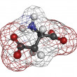 Aspartic acid (Asp, D, aspartate)amino acid, molecular model. - Stock Photo