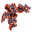 Transfer RNA (tRNA, Leucyl-tRNA) molecule — Stock Photo