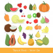 Tropical Fruit Vector Set — Stock Vector #26026299