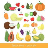 Tropical Fruit Vector Set — Stock Vector