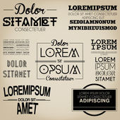 Typography Label Design Vintage Style — Stock Vector