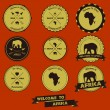 Africa Vintage Label Design  — Stock Vector
