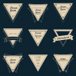 Triangle Vintage Label Set — Stock Vector