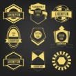 Vintage Logo Vector Set — Stock Vector #36018525