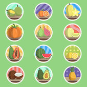 Tropical Fruit Flat Icon — Stock Vector