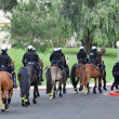Equestrian Police - Stock Photo