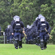 Moving toward the riot - police officers in protective gear - Stock Photo