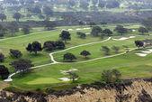 Green field. Hills — Stockfoto