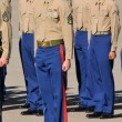 Stock Photo: Standing At Attention
