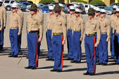 Standing At Attention — Stock Photo