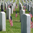 Fort Rosecrans National Cemetary — ストック写真