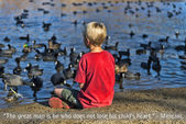 Boy feeding pigeons at the lake — Stock Photo