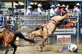 Cowboys participate in the Independence Day Team Roping Competition — Stock Photo