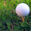 Golf Ball On A Tee - Stock Photo
