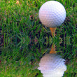 Difficult Shot! A golf ball on a tee in the rough and very close to a water hazard - Foto Stock