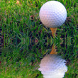 Difficult Shot! A golf ball on a tee in the rough and very close to a water hazard - Stockfoto