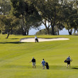 Torrey Pines Golf Course - Stock Photo