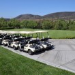 Line of golf carts - several pairs of carts waiting for a game of golf on a clear blue sunny day in Southern California. — Stock Photo #17598599
