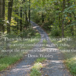 Path through the forest with quote — Stock Photo #31933243