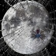 Stock Photo: Spider web over moon