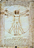Da Vinci's Vitruvian Man — Photo