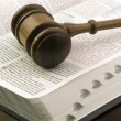 Foto Stock: Gavel and book