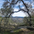 Stock Photo: Landscape with quote