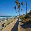 La Jolla, California — Stock Photo #47140883