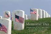Fort Rosecrans National Cemetery. — Stock Photo