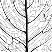 Hand drawn pattern of the leaf structure — Vector de stock