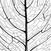 葉の構造の描かれたパターンを手します。 — ストックベクタ