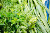Fresh green herbs at market — Stock Photo