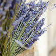 Violet dry lavender flowers — Stock Photo #30340501