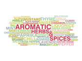 Variety of aromatic herbs and spices — Stock Vector
