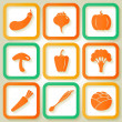 Set of 9 retro icons with vegetables — Stock Vector