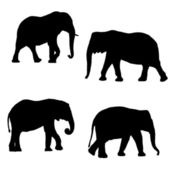 Black silhouettes of two elephants — 图库矢量图片
