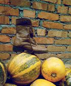 Pumpkins, brick wall, boot, like Halloween — Stock Photo