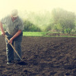 Grandpa is working on the field — Stock Photo