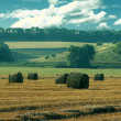 Bales of hay in the field. green hills. summer — Stock Photo