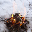 Bonfire on snow — Stock Photo #34556051