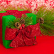 Holiday Gift with Pine Cones — Stockfoto