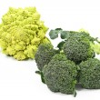 Broccoli Varieties - Stock Photo