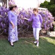 Stock Photo: Two Women Admire WistariVines.