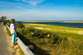 Woman Looks at a Cape Cod Beach — Stock Photo