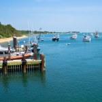 Boats near Chatham Fish Pier — Stock Photo
